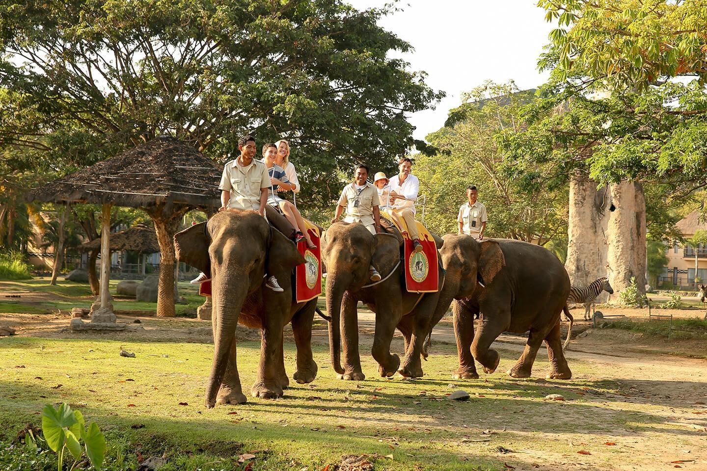 Mara River Safari lodge Elephant Back Safari at Bali Safari