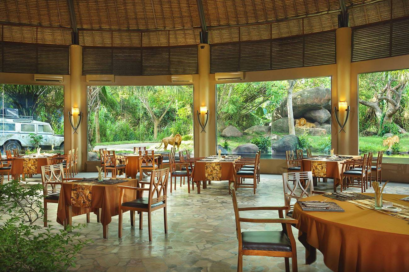 Tsavo Lion Restaurant Table Bali Safari Mara River Safari Lodge