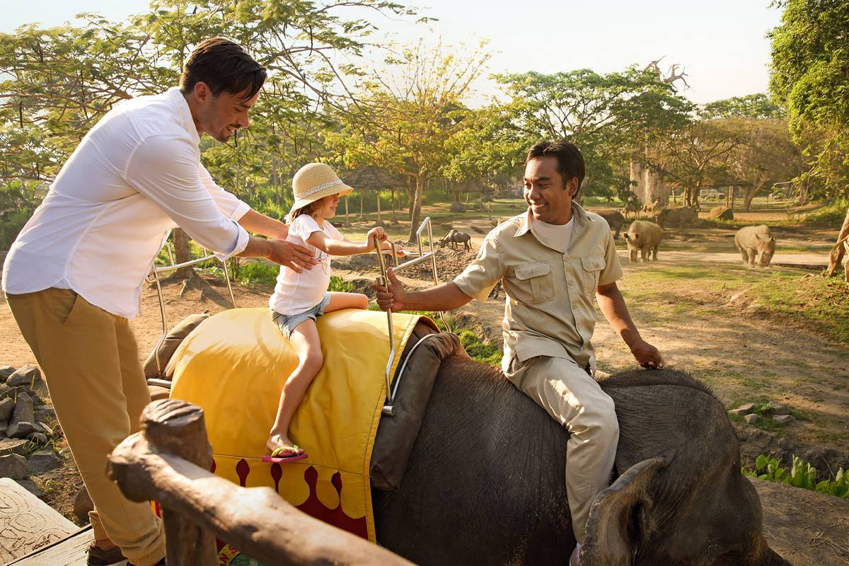 Room Rates Special Offers Mara River Lodge Ticket Night Safari Package Bali Marine Park Animal Rides Learn More