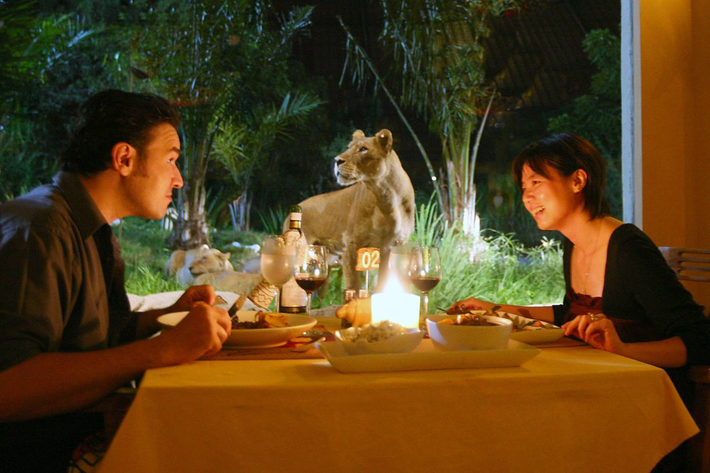 Tsavo Lion Couple Dinner at Bali Safari Mara River Safari Lodge