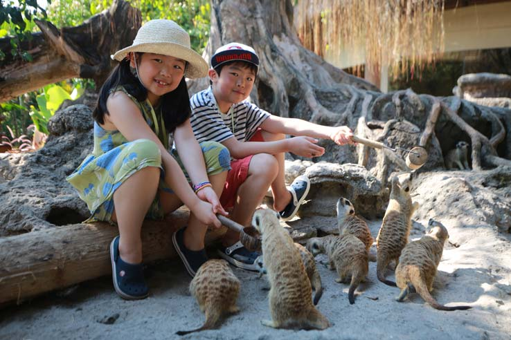 Traveling with Kids to Bali