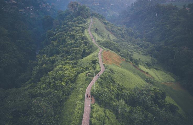 Hiking Tips Campuhan Ridge Walk