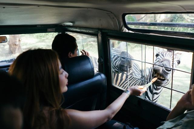 4x4-safari adventure - family holiday